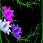 NATURE – FLOWER